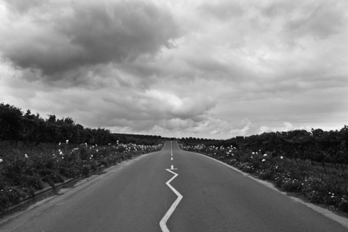 Image result for straight and crooked road
